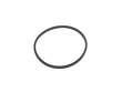 Fuel Filter O-Ring