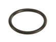 Auto Trans Filter O-Ring