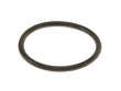 Fuel Pump Strainer O-Ring