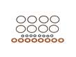 Fuel Injector O-Ring Kit